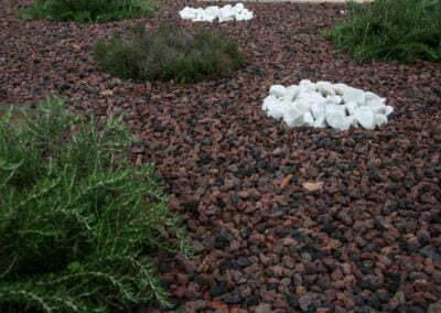 Detall a les pedres