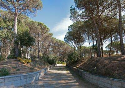 Panorama del camí principal