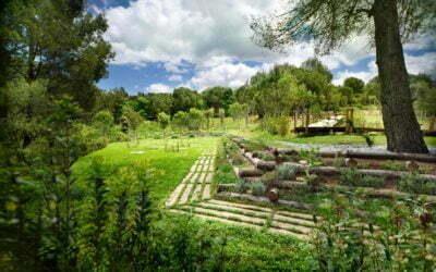 Àltima: Els cementiris del Baix Llobregat, Vallès Occidental, Garraf i Ripollès es preparen per a Tots Sants